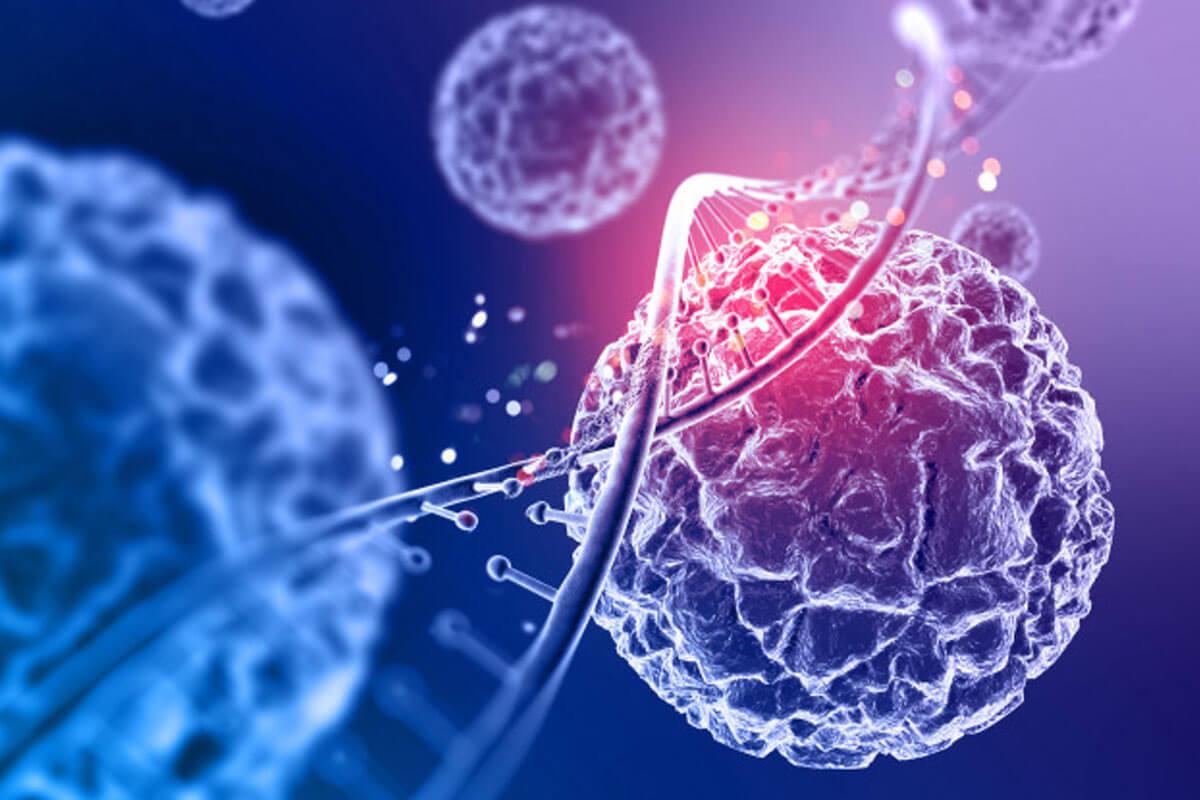 Conception d'ADN - Idée innovante de projet
